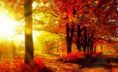 Late fall sunset