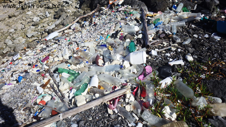 Plastic Garbage in Belize