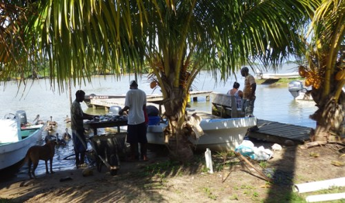 Monkey River Fishermen Living Off The Grid
