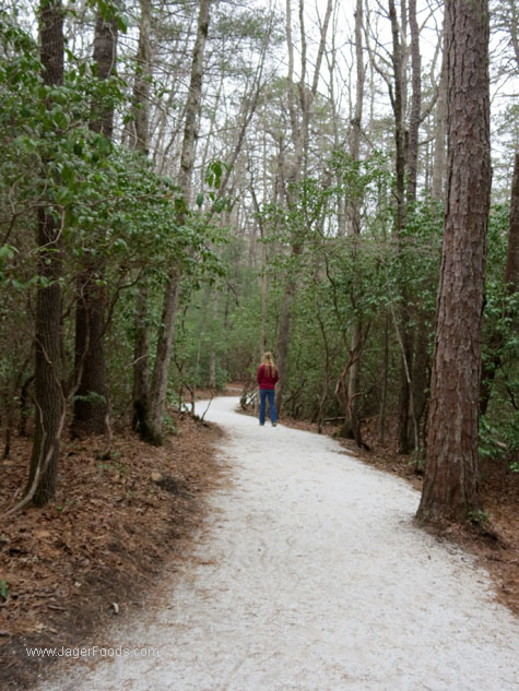 Dupont Hiking Trail in NC