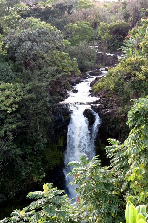 Kamae'e Waterfall, Big Island, Hawaii