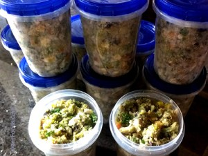 Containers of Homemade Organic Dog Food