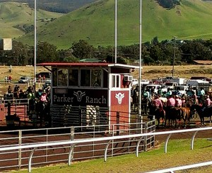 Annual Rodeo at Parker Ranch in Waimea HI