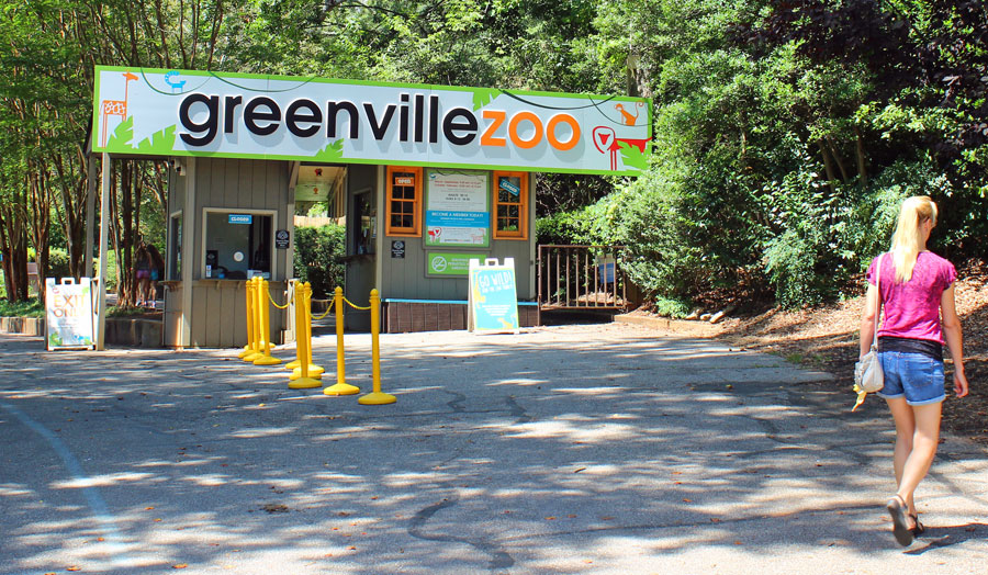Silke walking up to the Greenville Zoo