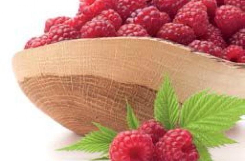 5 правил, которые нужно усвоить перед тем, как запускать органическую ягодную ферму