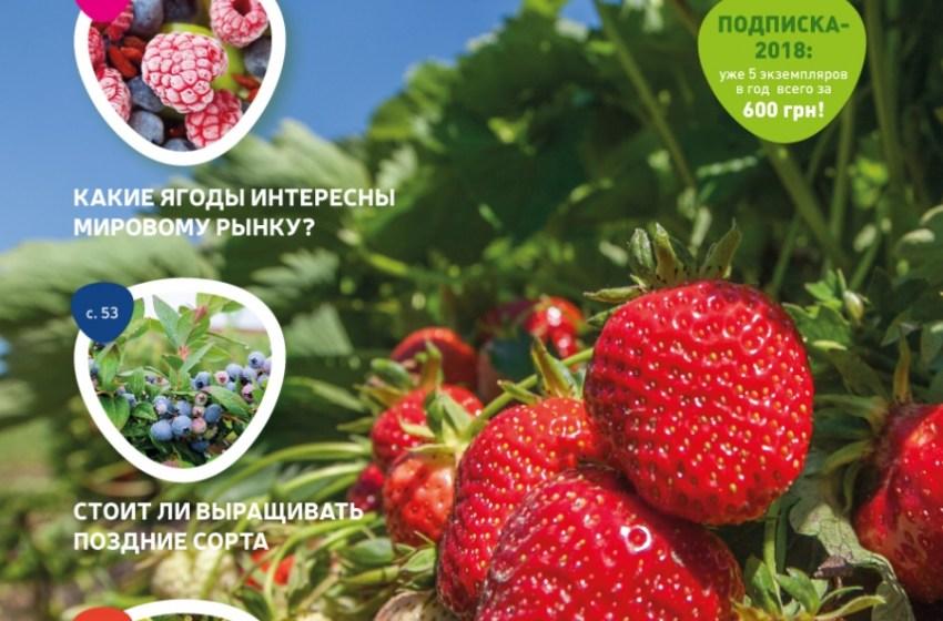 «ЯГОДНИК» №1 (2018): презентация Европейских технологий и успешный опыт ягодоводства