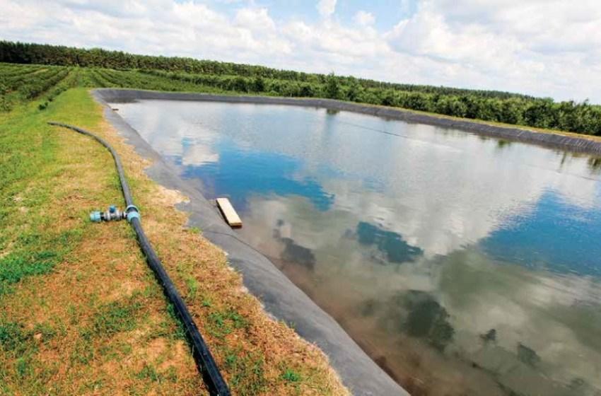 Защита от заморозков – распыление воды