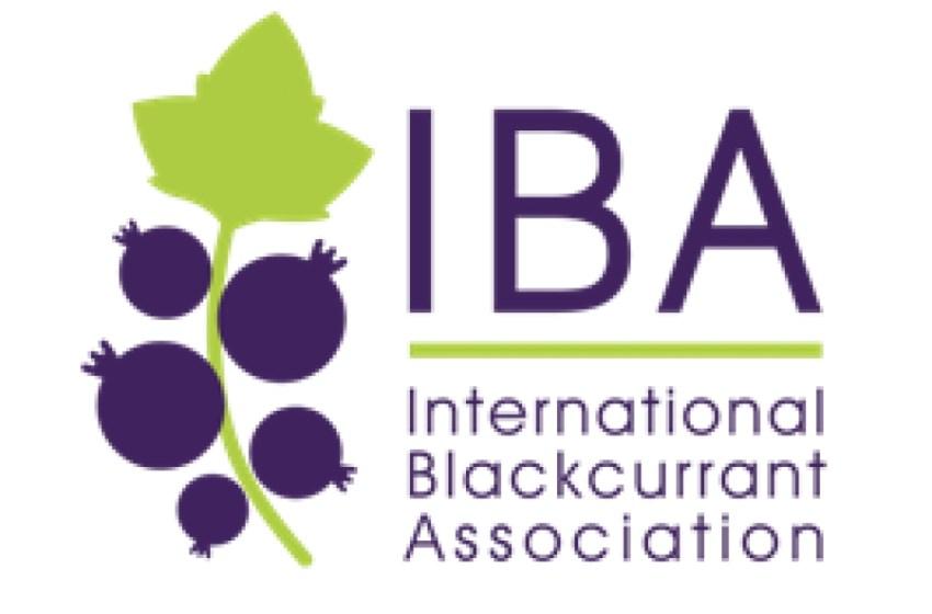 Міжнародна асоціація запрошує на Конференцію IBA -2020 в Україну