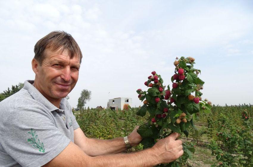 Курс на органіку: все, що потрібно знати про вирощування екопродукції