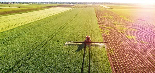 GlobalG.A.P. і захист рослин: як виконати вимоги стандарту