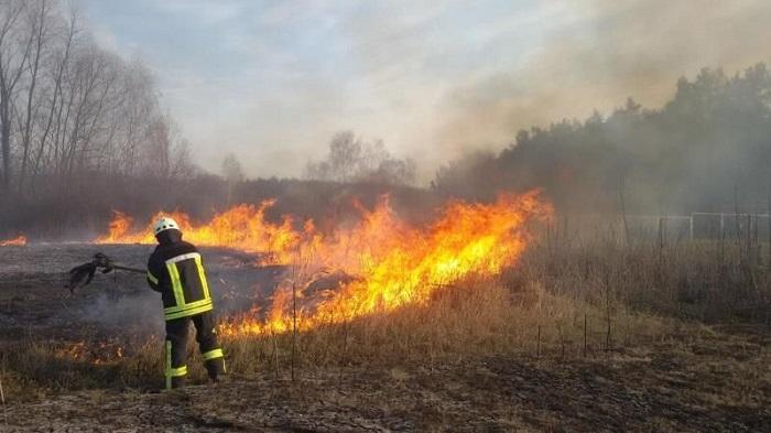 Експерти розвінчують міфи про користь спалювання трави