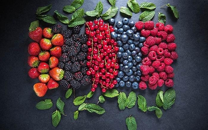 Кришнаїти створили екоферму та вирощують органічні ягоди