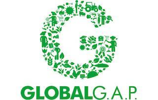 Стандарт GLOBAL G.A.P.: як отримати, скільки коштує і навіщо він аграріям?