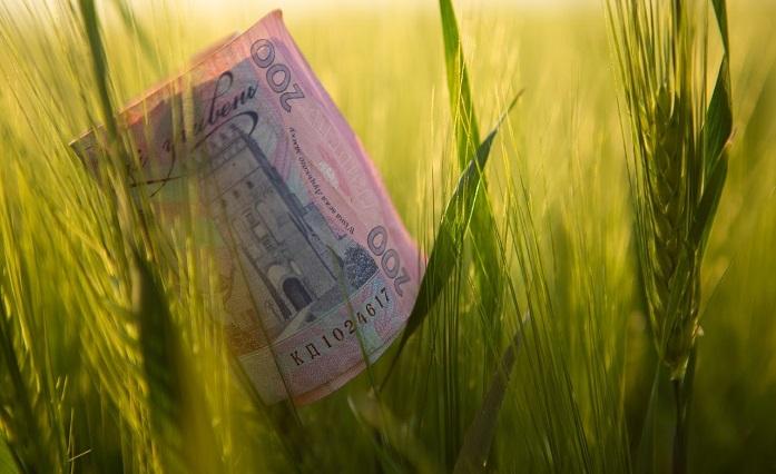Укрдержфонд оголошує конкурс  фінансової підтримки фермерських господарств