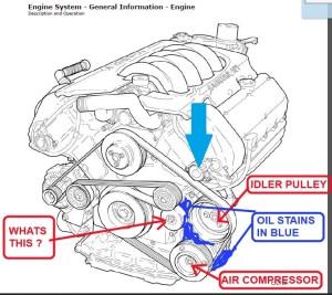 Service manual [Diagram To Install Serpentine Belt 2000 Jaguar Xj Series]  Service Manual