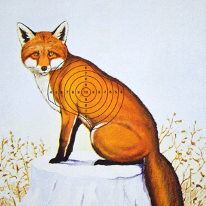 'Red Fox' print now available
