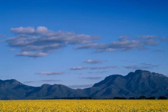 Stirling Ranges, WA
