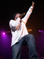 gentleman 2006