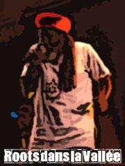 roots dans la vallee 2007