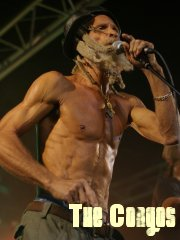 the congos 2008