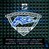 thoroughbred riddim