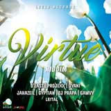virtue riddim