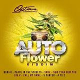 auto flower riddim