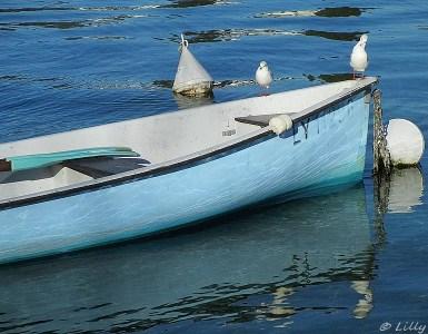 barque bleue à Annecy