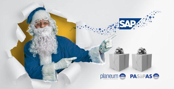 SAP PLANEUM PASAPAS