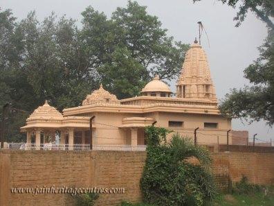 hastinapur_-_shwetambar_temples_20111021_1960575730
