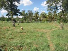 jain_ruins_of_kumarabeedu_mysore_district_karnataka_20131216_1423177678