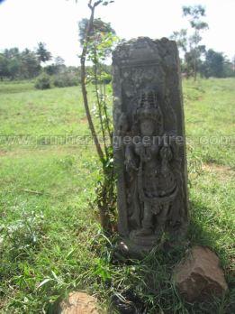 jain_ruins_of_kumarabeedu_mysore_district_karnataka_20131216_1424271074