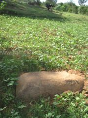 jain_ruins_of_kumarabeedu_mysore_district_karnataka_20131216_1620398371