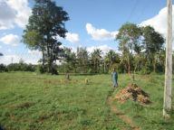 jain_ruins_of_kumarabeedu_mysore_district_karnataka_20131216_1739969387