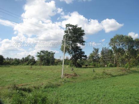 jain_ruins_of_kumarabeedu_mysore_district_karnataka_20131216_1936663206