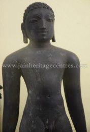 Jain-Tirthankar-Idols-Folklore-Museum-Cochin-Ernakulam-0003