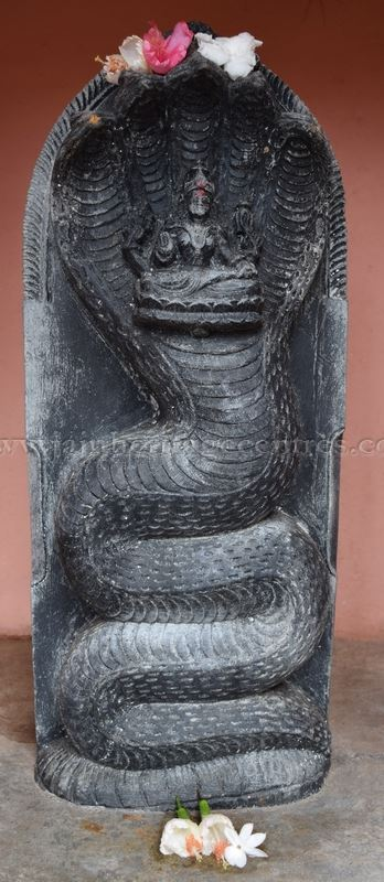 Karnataka_Tumkur_Kuchhangi_Parshwanath_Digambar_Jain_Temple_0011
