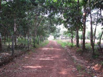 bajarkala_20111020_1059632101