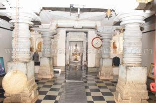 sri_mahavir_swamy_digambar_jain_temple_20160515_1892964067
