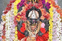 sri_mahavir_swamy_digambar_jain_temple_20160515_2062728278