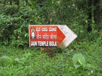 sri_vardhaman_swamy_digambar_jain_temple_bolagramasri_v_20120805_1877949147
