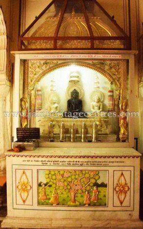 digamber_jain_nasiyan_bhattarakji_at_jaipur_20160622_1484219346