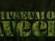 weed museum in jaipur, museum of weed in jaipur