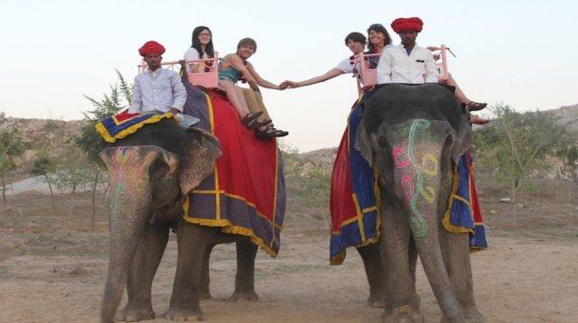 elephant safari at nahargarh biological park