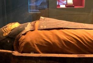 Mummy in Jaipur museum