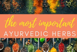 Importance of Ayurvedic Herbs