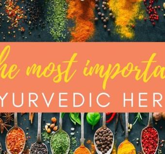 Importance of Ayurvedic Herbs