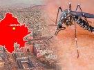 Dengue-in-Rajasthan