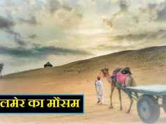 Jaisalmer Weather News