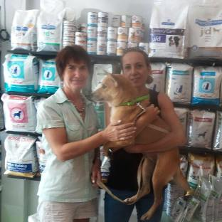 We are very happy today because our sweet Luna found her forever home! Klaudia and her family adopted an older dog from us 5 years ago named Chia. They gave Chia 5 fantastic years, until she recently passed away of old age. Now its Luna's turn to get a fantastic life! Thank you very much Klaudia!